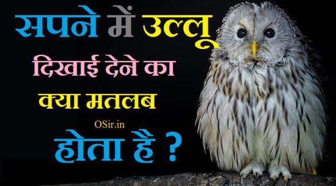 उल्लू के दर्शन कैसे होते हैं, owl in dream meaning , owl in dream hindu, owl in dream meaning in hindi,,, seeing owl in dream islam, killing owl in dream meaning, biblical meaning of owls in dreams, baby owl dream meaning, owl attack dream meaning, black owl dream meaning, सपना का अर्थ हिंदी में, स्वप्न फल लिस्ट PDF, सपनों का रहस्य इन हिंदी, स्वप्न का अर्थ हिंदी में, स्वप्न फल लाल किताब PDF, सुबह का सपना देखना, कौन से सपने देंगे कैसा फल, सुबह के सपने का मतलब,सपने में सफेद उल्लू को देखना, ख्वाब में उल्लू देखना, सपने में उल्लू की आवाज सुनना, सपने में उल्लू देखने का मतलब बताइए, रात में उल्लू के दर्शन, सपने में मरा उल्लू देखना, उल्लू को मारने से क्या होता है, ख्वाब में उल्लू देखना, घर में उल्लू आने से क्या होता है, उल्लू से धन प्राप्ति, उल्लू की आवाज को क्या कहते है, उल्लू की आवाज कैसी होती है, ullu ko sapne me dekhane ke fayade , ullu ko sapne me dekhane se jya hota hai , ullu ka ghar me aana shubh hai ya ashubha , ullu komarane se kya hota hai ,