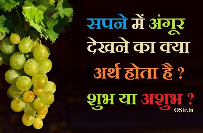 प्रेगनेंसी में सपने में अंगूर देखना,grape in dream hindi , , grapes in dream in hindi, grapes in dream, grapes in dream hindu meaning, what is the meaning of grapes in a dream, what does it mean to see grapes in your dream, what is the meaning of eating grapes in a dream, what does it mean to eat grapes in a dream, सपने में काले अंगूर खाना, सपने में काला अंगूर खाना, सपने में काला अंगूर खाते हुए देखना , सपने में हरा अंगूर देखना , सपने में अंगूर खाते हुए देखना , sapne me angoor dekhana , , sapne me angoor dekhna, sapne me angur dekhna in hindi, sapne mein angoor dekhna kaisa hota hai, sapne me angur khate dekhna, sapne me ajgar ko dekhna, sapne mein angur khate dekhna, sapne me angur ka bagicha dekhna, sapne me angur ka guchha dekhna, sapne me angoor khatte dekhna, सपने में अंगूर का देखना, sapne me angoor ki bel dekhna, sapne mein angoor ki bel dekhna, sapne me angoor, sapne me angoor khana, ,